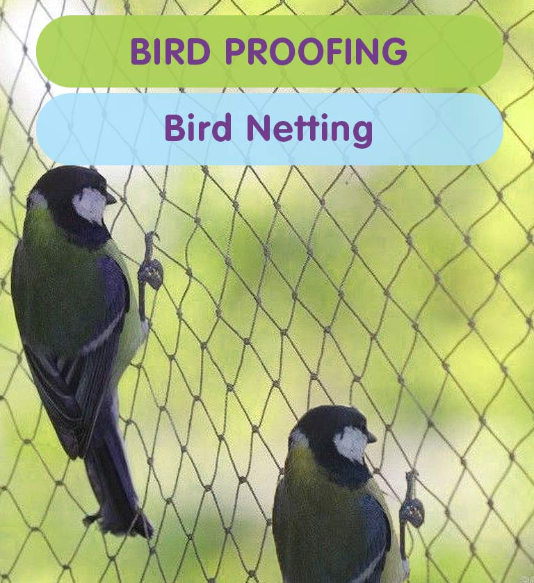 Bird Netting for Homes & Businesses in West London